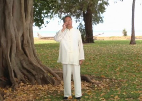 Soul Healing for Urinary Bladder with Master Sha