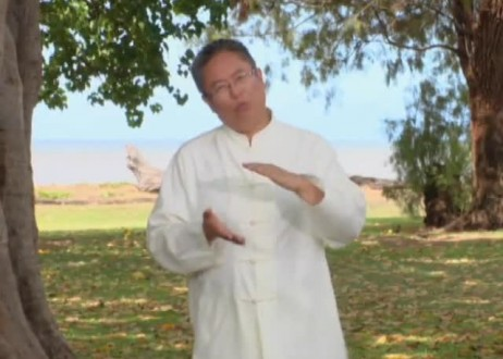 Soul Healing for Stomach with Master Sha