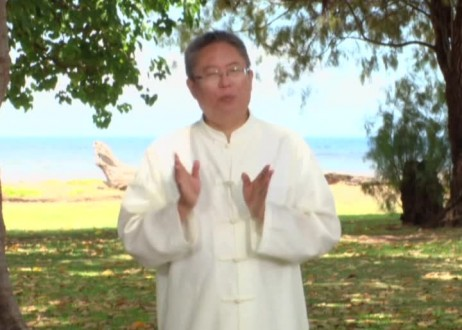 Soul Healing for Adrenal Glands with Master Sha