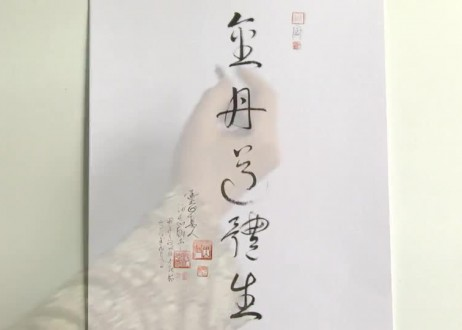 43. Jin Dan Tao Ti Sheng (Golden Light Ball and Tao Light Body Are Created)