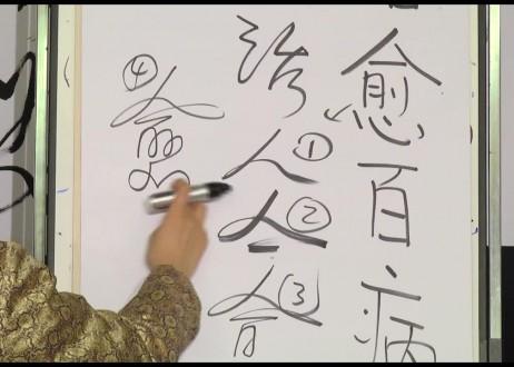 13. Zhi Yu Bai Bing